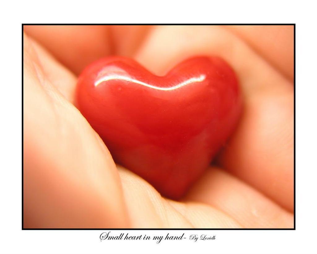 Heart 0294